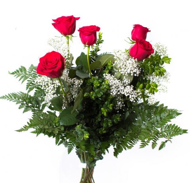 5 Rosas y  Peluche Corazón